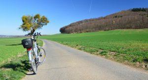 Tour delle abbazie e vino in e-bike