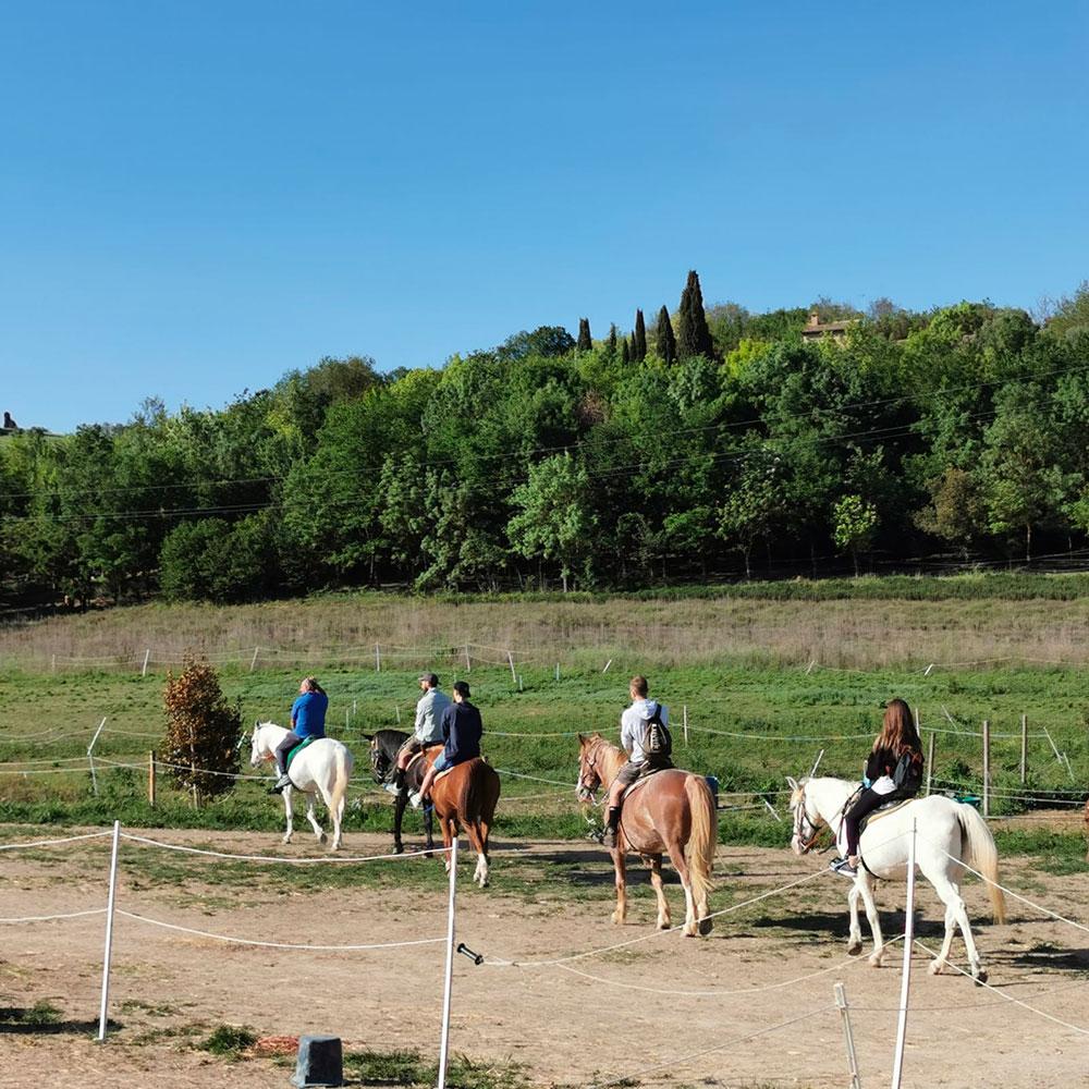 Tour a cavallo - Tour delle Marche 2021 - Marchetour.it